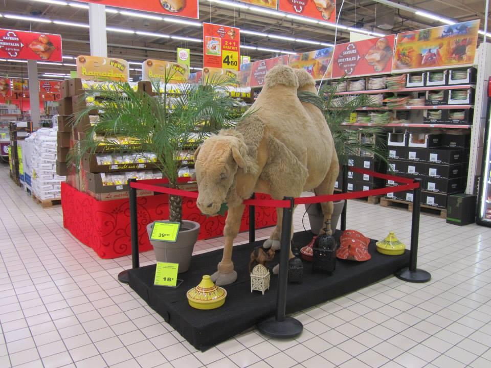 Ramadan 2013 : Auchan Leers (copyright Al kanz)